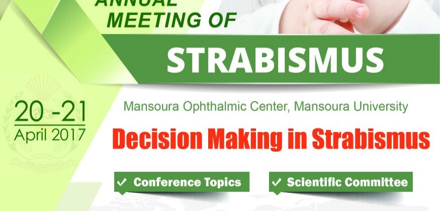 The 13th Annual Meeting of Strabismus